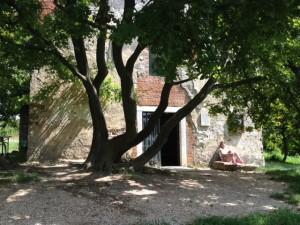 Elmélyülés a Gercse templom előtt: Miért így történt?